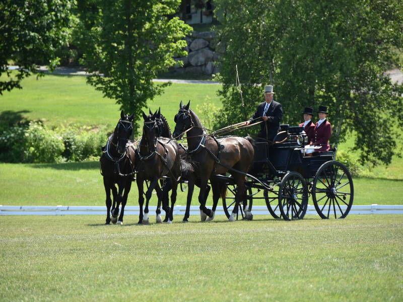 Bromont International Driving | Bromont | Sports events - Eastern