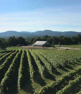 Domaine Bresee